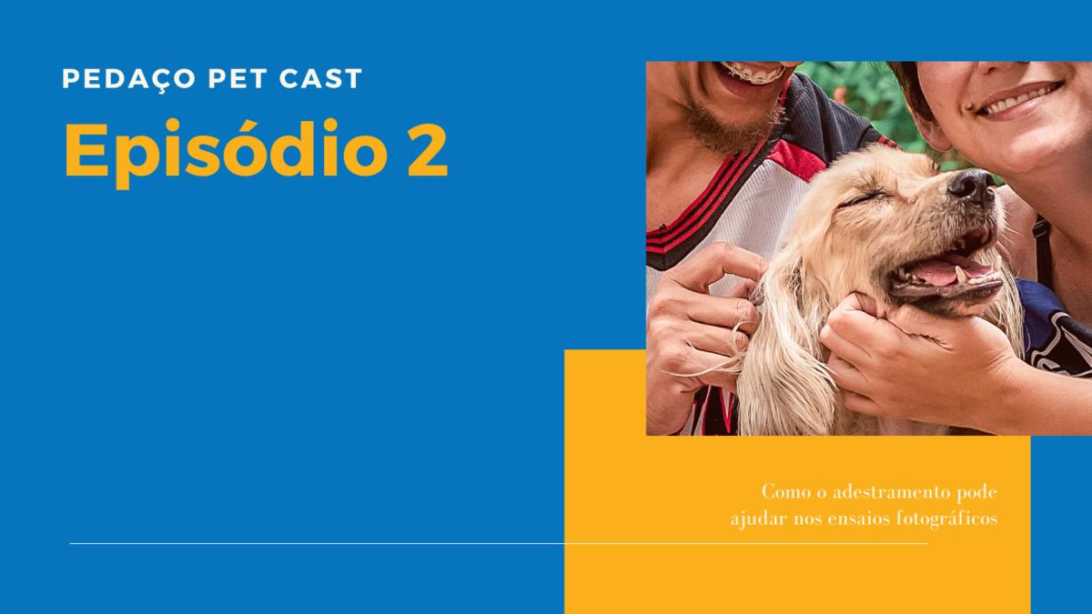Imagem capa - Pedaço Pet Cast 2 - Adestramento inteligente por Daiane Oliveira