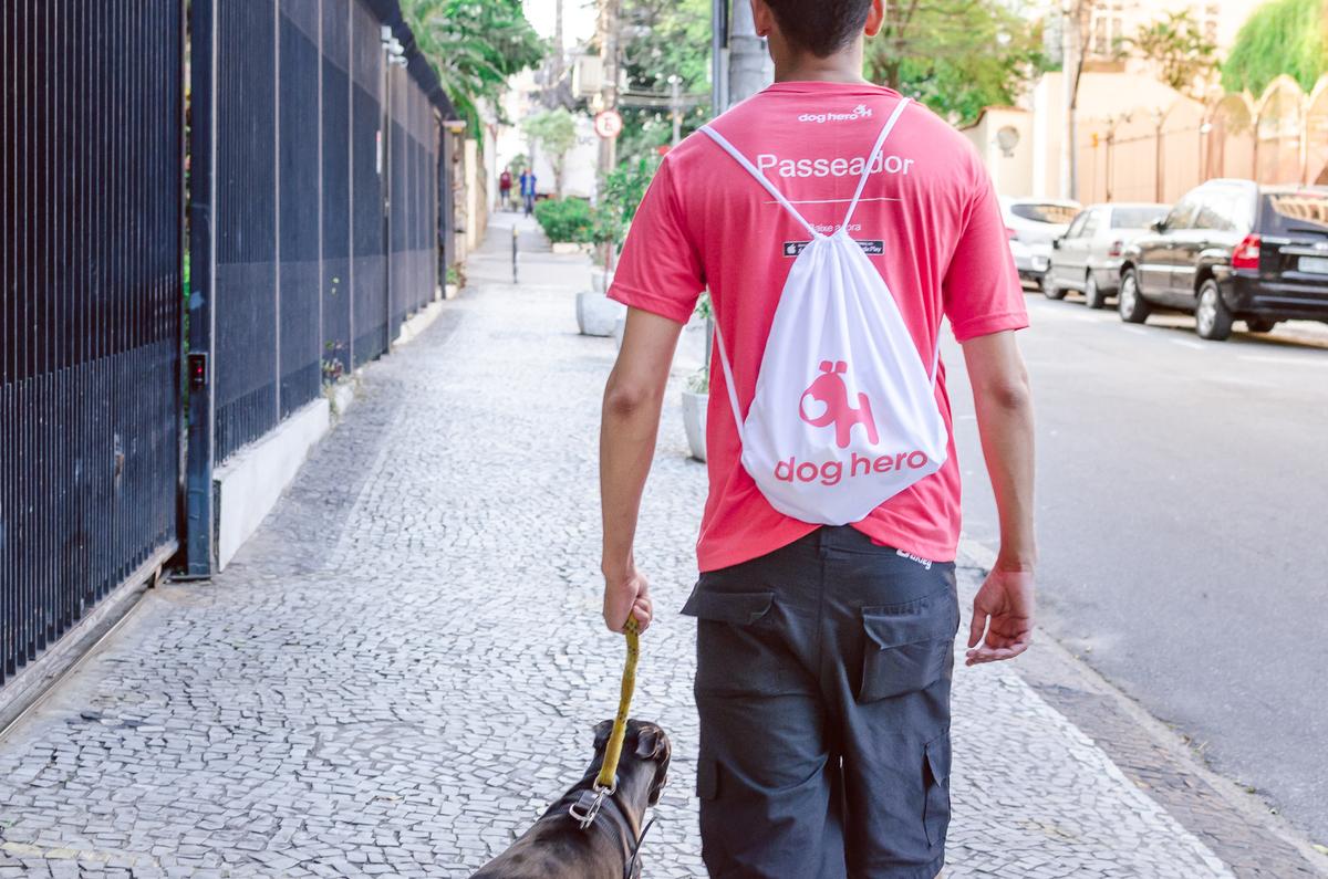 Imagem capa - A Importância do Passeio para seu Animal de Estimação por Daiane Oliveira