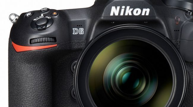 Imagem capa - Nikon D6 e lente NIKKOR de 120-300mm f / 2.8 por Jota Fotos