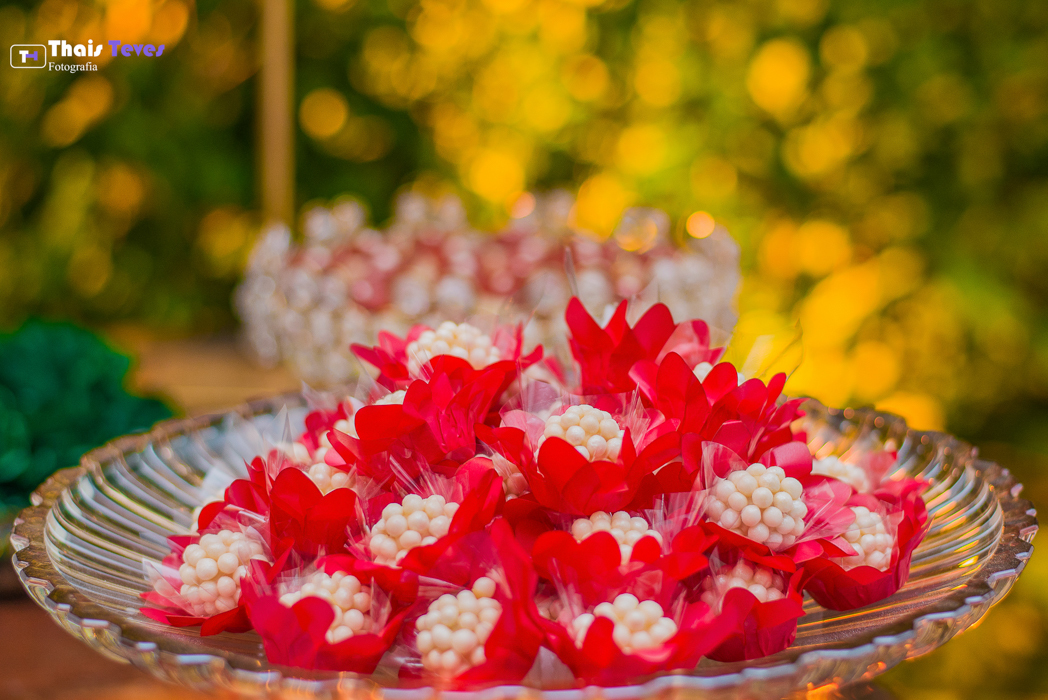 Pré Casamento Pré-wedding Weeding Edson E Glória - Petrópolis - RJ Casamento - Riachos de Itaipava Thais Teves Fotografia