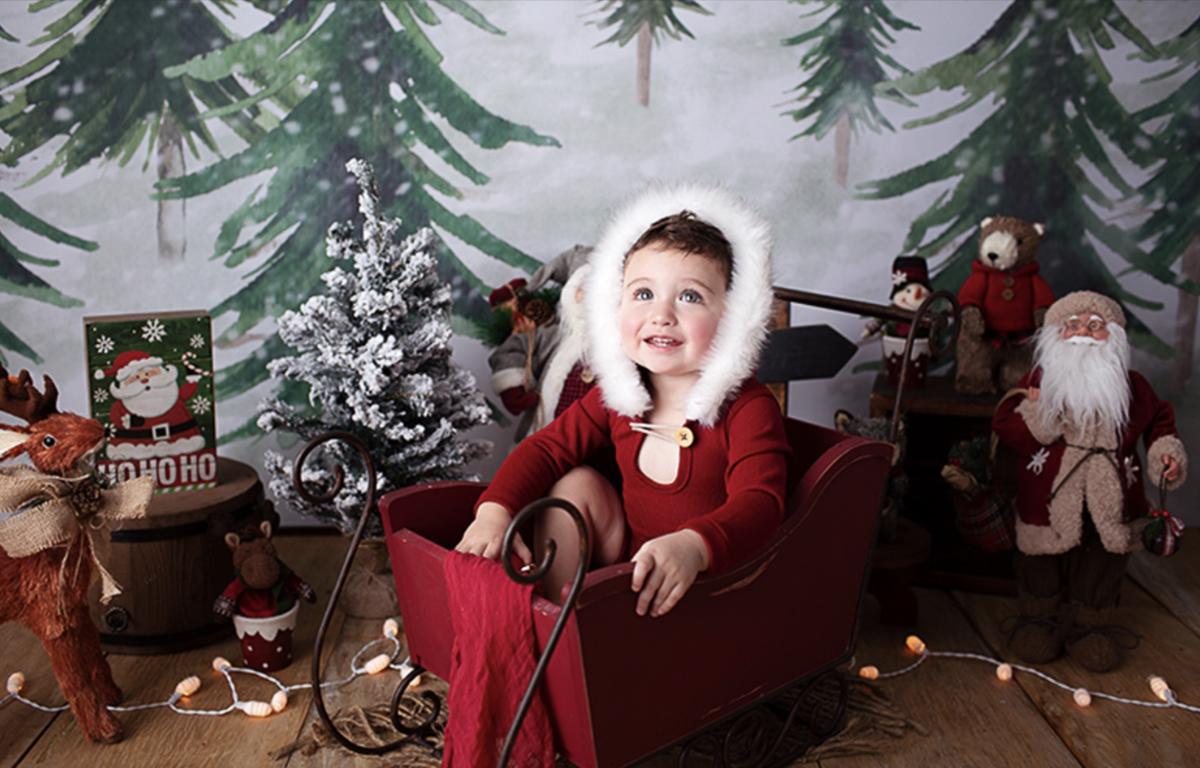 Imagem capa - Sessões de Natal - 27, 28 e 29 de Novembro por Bel Ferreira