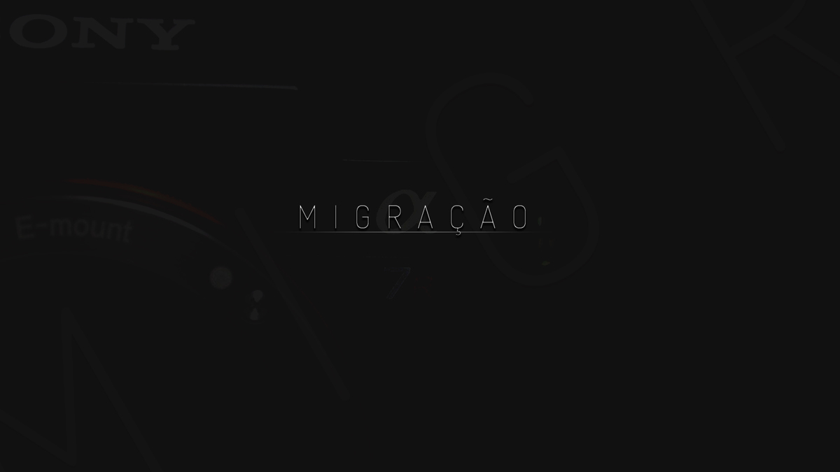 Imagem capa - Canon x Sony - Migração  por Araras Produtora