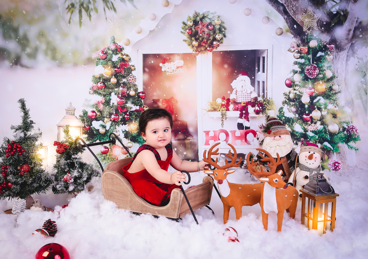 Imagem capa - Mini Sessão de Natal 2020 por Ester Angelini
