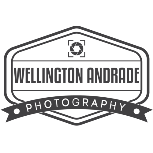 Logotipo de Wellington Andrade