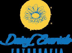 Logotipo de Daisy Evaristo