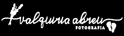 Logotipo de Valquiria Abreu