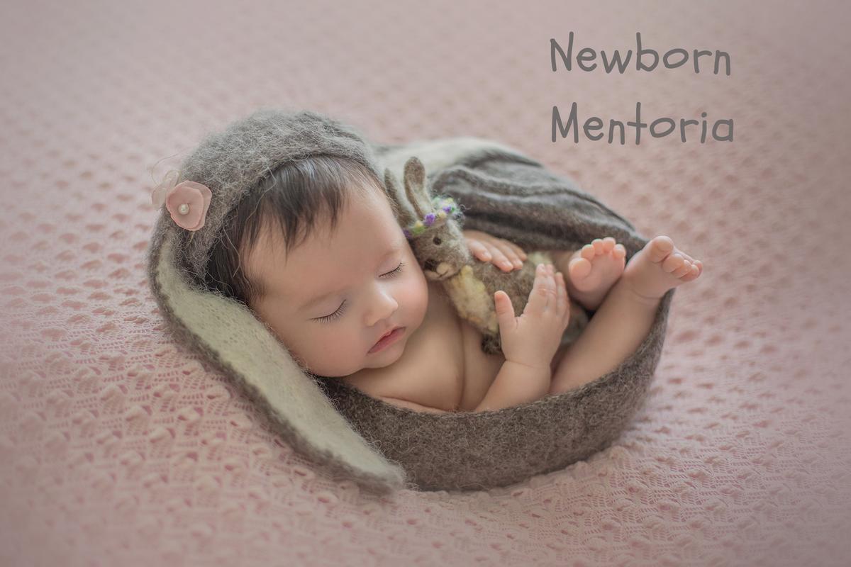 Imagem capa - Mentoria Newborn por Ana Mokarzel