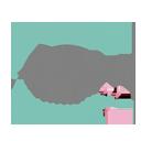 Logotipo de Ana Cristina Koche