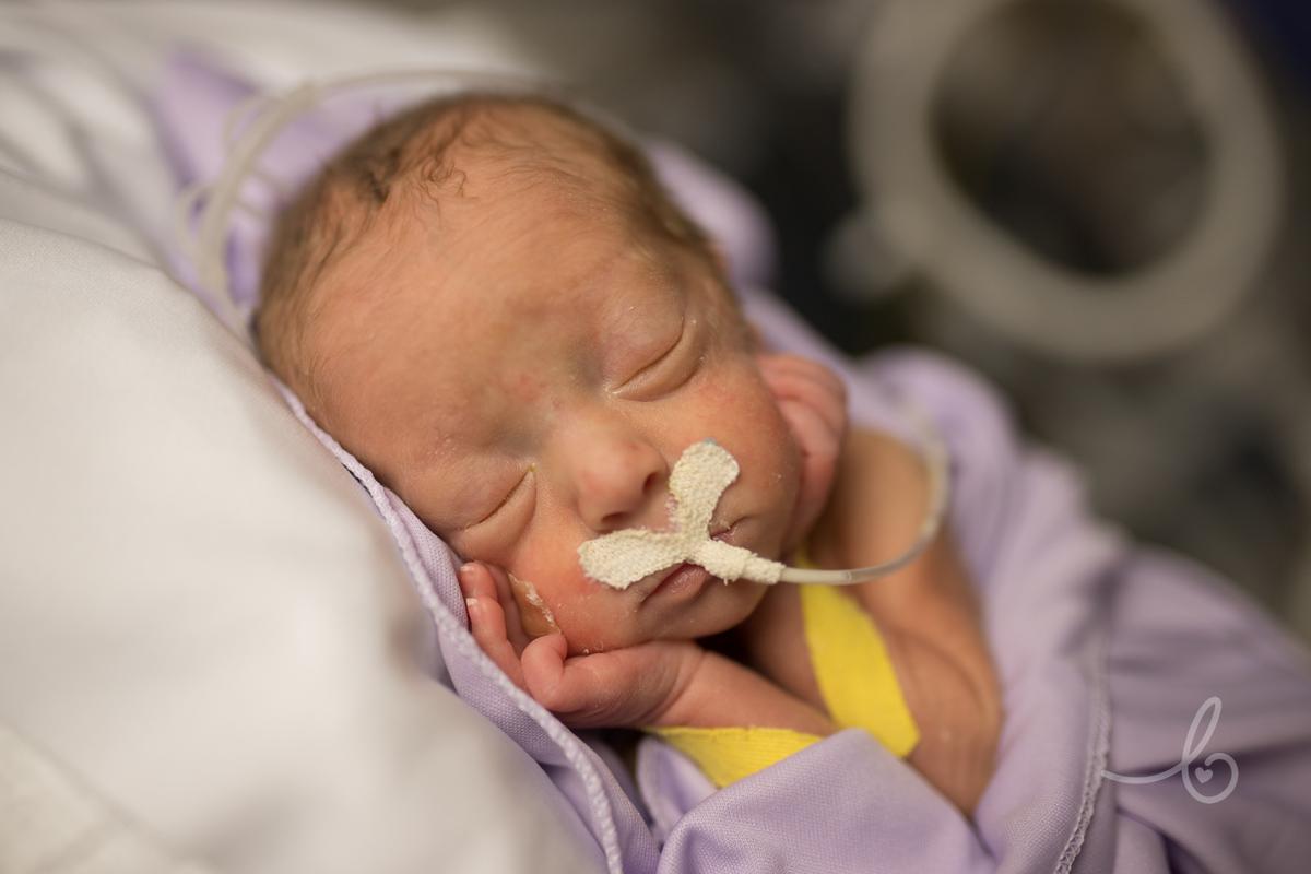Imagem capa - Newborn em UTI Neonatal: Sim! É possível! 💜💜💜 por Fernanda Luz