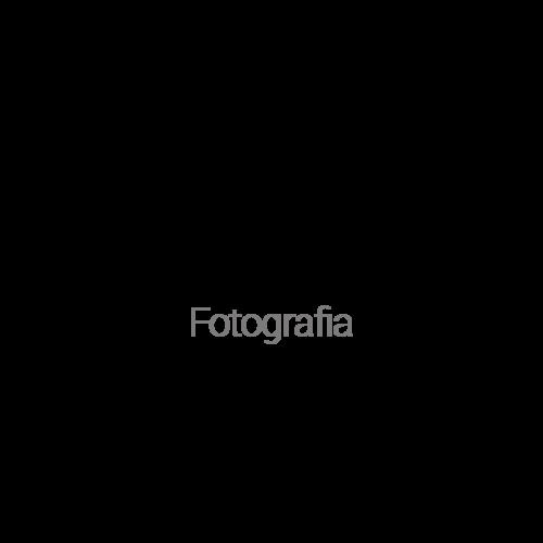 Logotipo de Sebah Carvalho