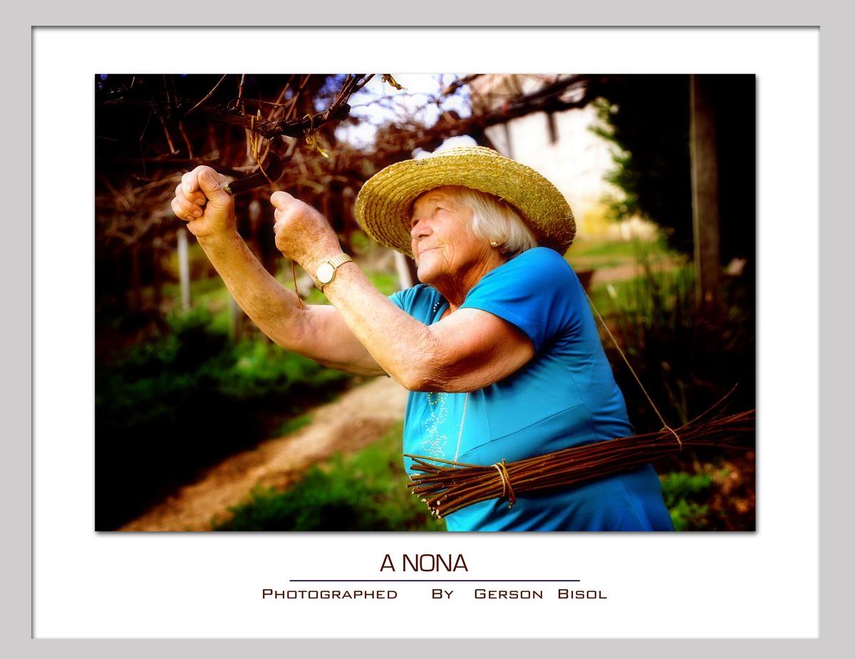 Imagem capa - A Nona por Gerson Bisol