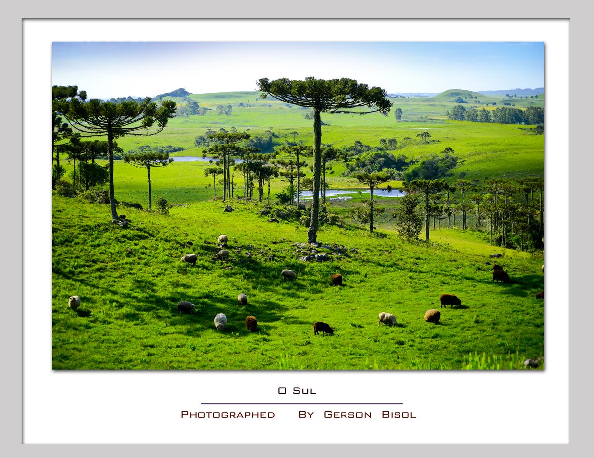 Imagem capa - O sul por Gerson Bisol