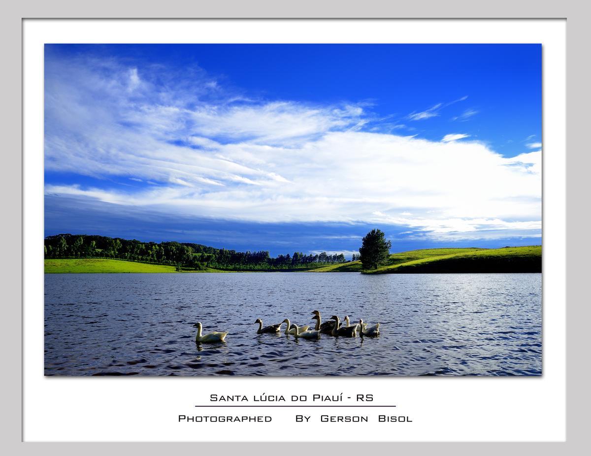 Imagem capa - O Lago por Gerson Bisol