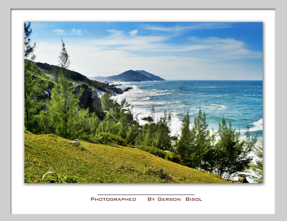 Imagem capa - Silveira por Gerson Bisol