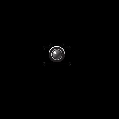 Logotipo de NATALICIO  BRITO