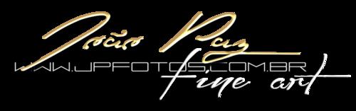 Logotipo de João Paz