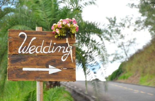 Contate Dinho Fotos, Fotografo de taquaritinga, taquaritinga - SP, fotografia
