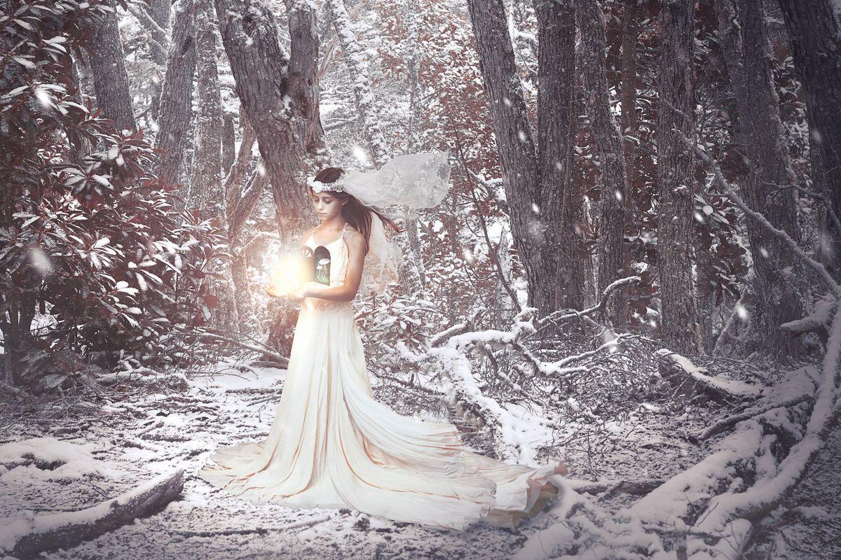 Imagem capa - Paso a paso - Alma del bosque (video) por GrendelFoto