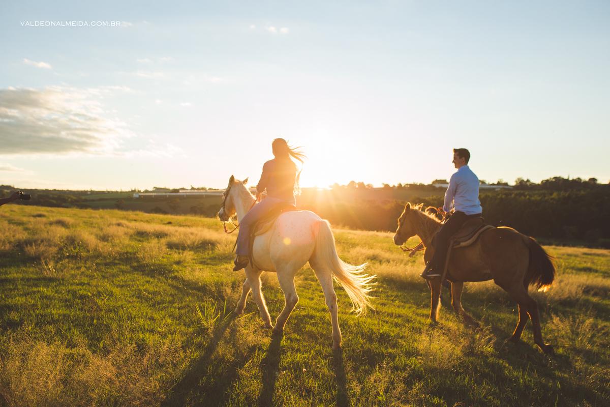 Imagem capa - Ensaio fotográfico com cavalos em Holambra por Valdeon A Silva