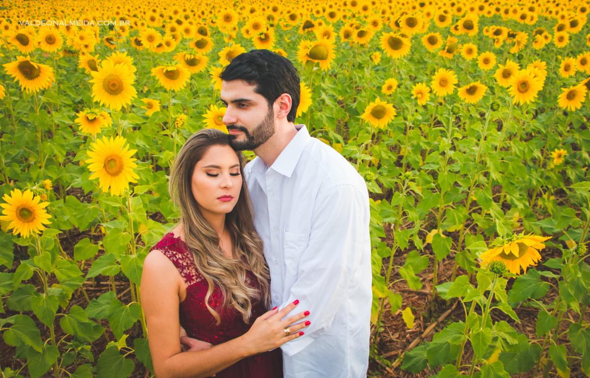 Imagem capa - Melhores lugares para fotografar em Holambra por Valdeon A Silva