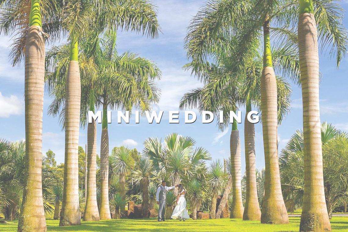 Imagem capa - Miniwedding: casando com elegância e baixo custo por Wellington Arruda