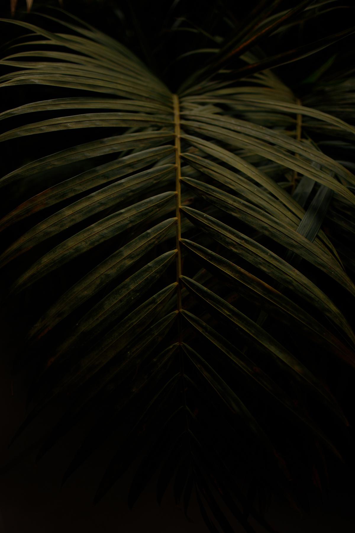 Imagem capa - Eu Acredito por Caio Mayer Fotografia