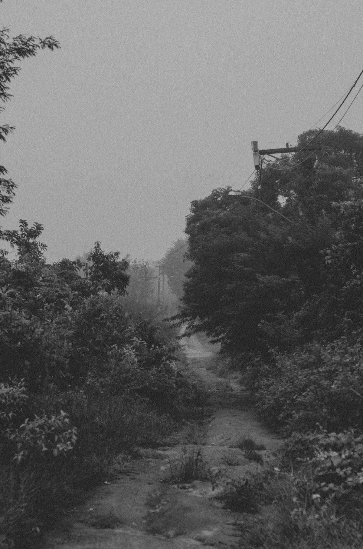Imagem capa - A Minha Fotometria! por Diogo Souza
