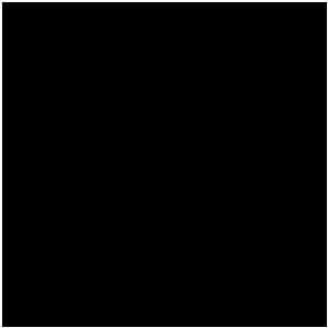 Logotipo de Ernandes Amaral