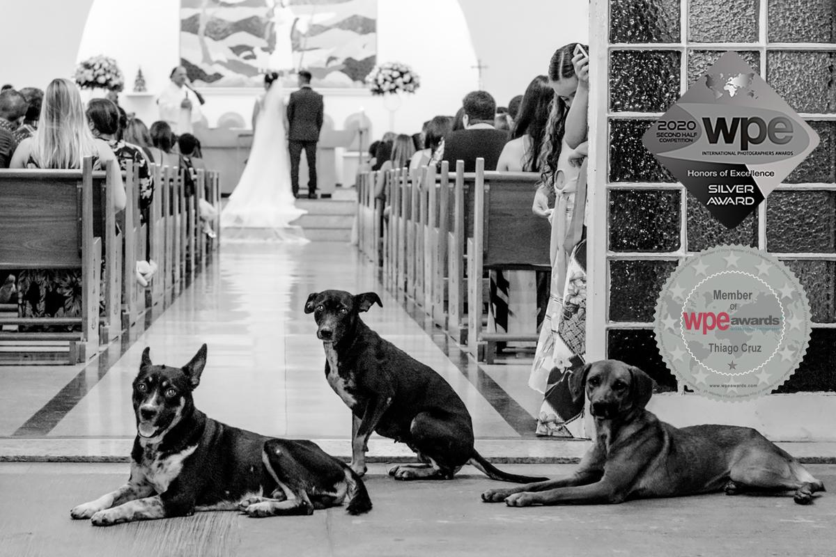 Imagem capa - Uma das fotos mais fofas que você verá hoje. por Thiago Cruz