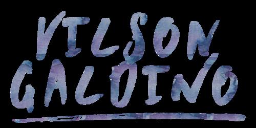 Logotipo de Vilson Galdino Ribeiro Junior