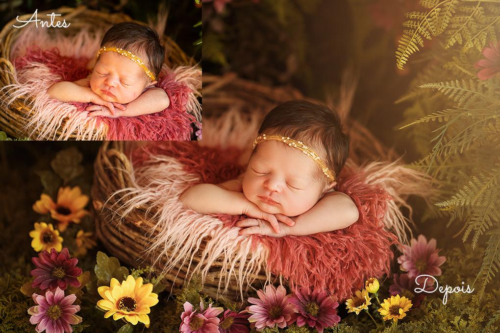 Imagem capa - Fotógrafa de gestante e newborn (recém nascidos) no ABC - SP por Sandra Villani Fotografia