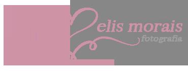 Logotipo de Elis Morais da Silva
