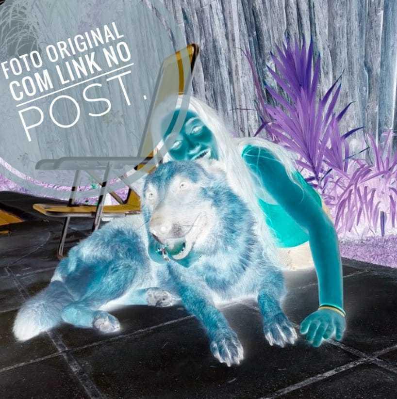 Imagem capa - Ataque de Cão durante fotos na Argentina por Leonardo Gonçalves