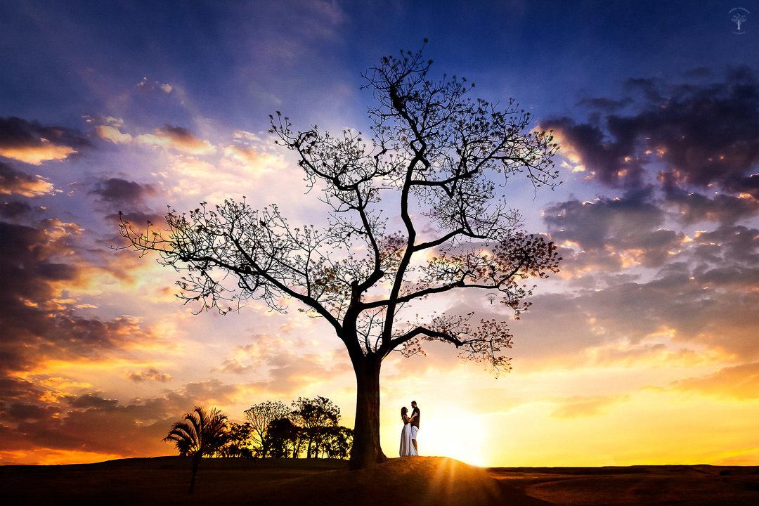 Pré Wedding - Ensaio de Casal Parque Ecológico | Campinas SP | Nathalia +  Daniel - Parque Ecológico | Campinas SP