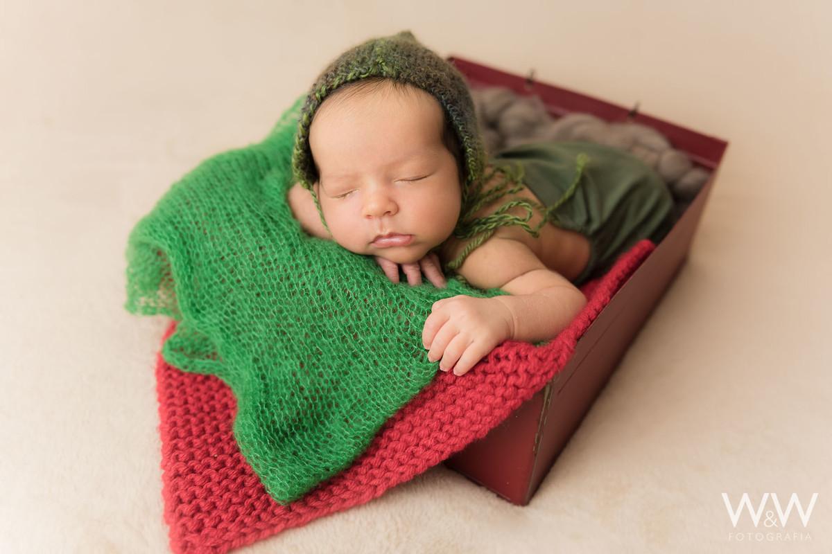 ensaio newborn menino sao paulo sp