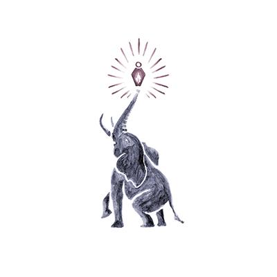 Imagem capa - Memória de elefante por Renata Barbosa Fotografia