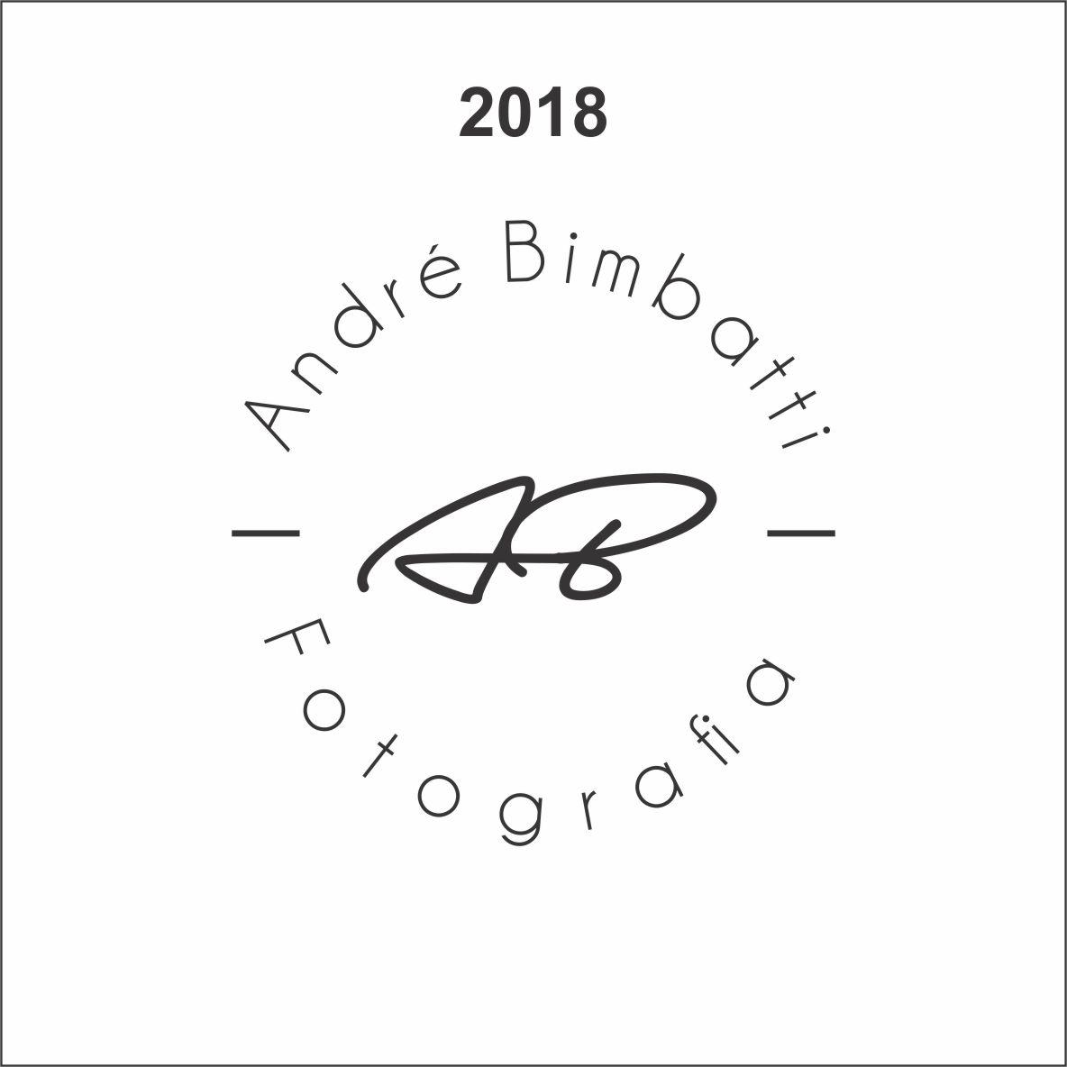 Imagem capa - A Evolução da Logomarca por Andre Bimbatti