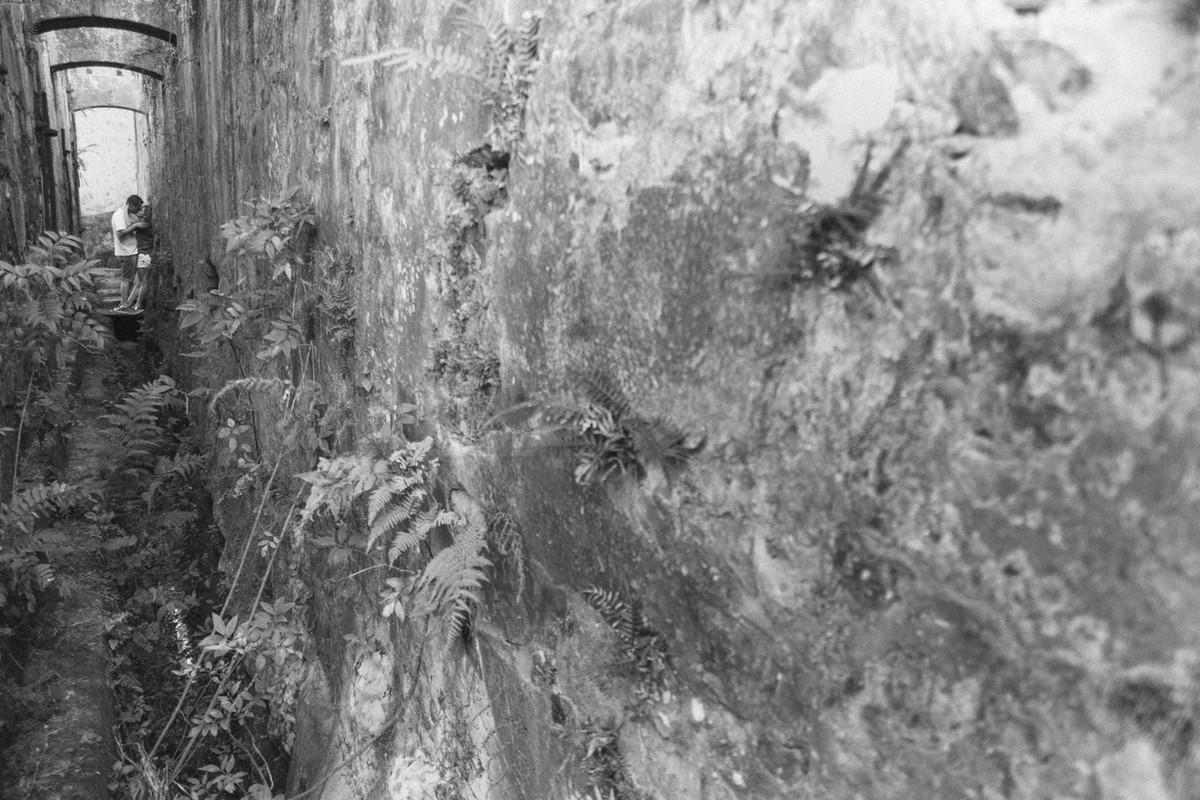 O PRE CASAMENTO DA TANIA E MARCO FOI FEITO EM SOROCABA SP MAIS A FOTOGRAFIA DE CASAMENTO DELES FOI EM INDAIATUBA SP PROXIMO A CAMPINAS SP PELO ESTUDIO DELFI DO REGINALDO DELFI FOTOGRAFIA 22
