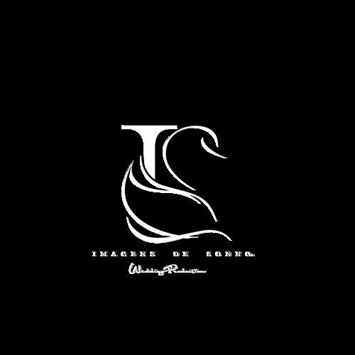 Logotipo de Orlando Fernandes