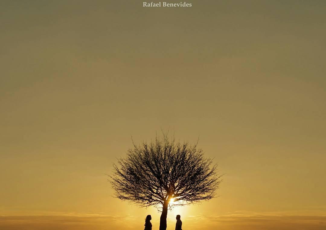 Imagem capa - Como uma Àrvore por Rafael Benevides