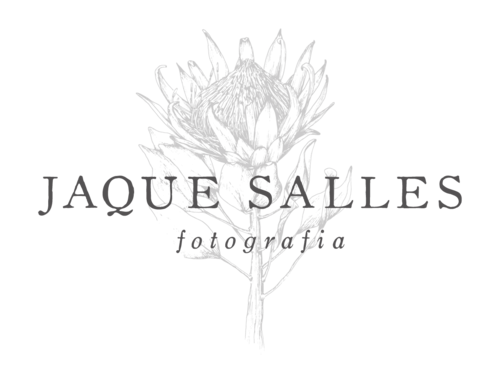Logotipo de Jaque Salles