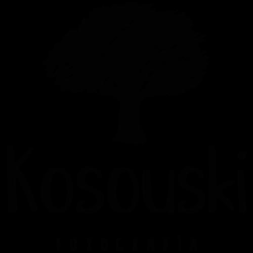 Logotipo de ju e nilton kosouski