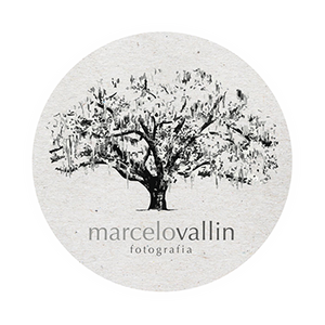Logotipo de Marcelo Vallin