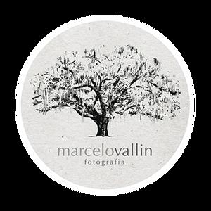 Logotipo de Marcelo Vallin