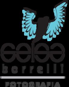 Logotipo de Geísa dos Santos Borrelli