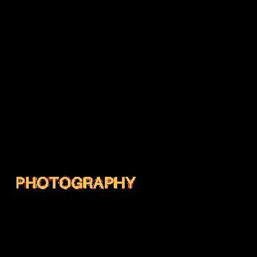 Logotipo de barbara coufal