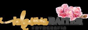 Logotipo de VALQUIRIA RAITER
