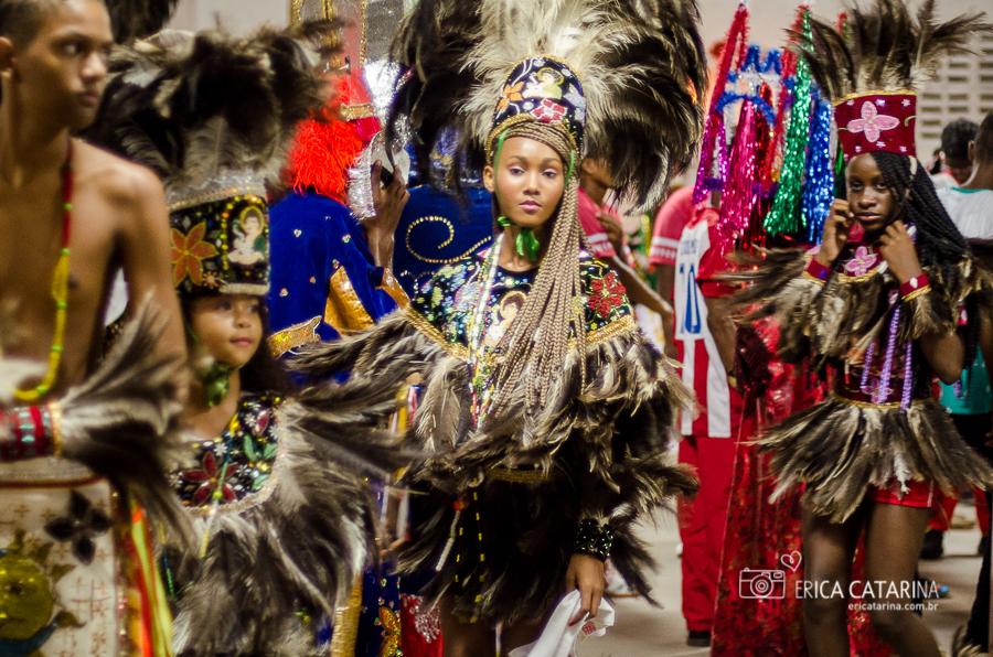 Imagem capa - {Maranhão} Boi de Pindaré por Erica Catarina Pontes