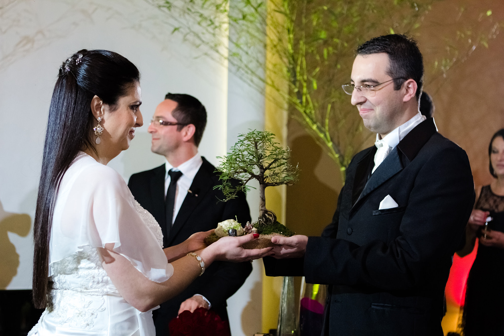 Imagem capa - Dicas Para Noivas - Cerimônias de Casamento - Parte 2 - O Celebrante, Cerimônias Personalizadas por Vinicius Vogel