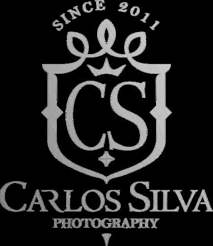 Logotipo de carlos henrique da silva